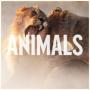 [NEW MUSIC] Maroon 5 –Animals