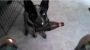 [VIDEO] This Dog That Fetches Beer Can Play For Me Anyday