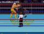 The Evolution Of Wrestling Video Games(1992-2016)