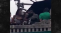 Ezekiel Elliott Popped Out A Chick's Titty For The Camera At ParadeDay
